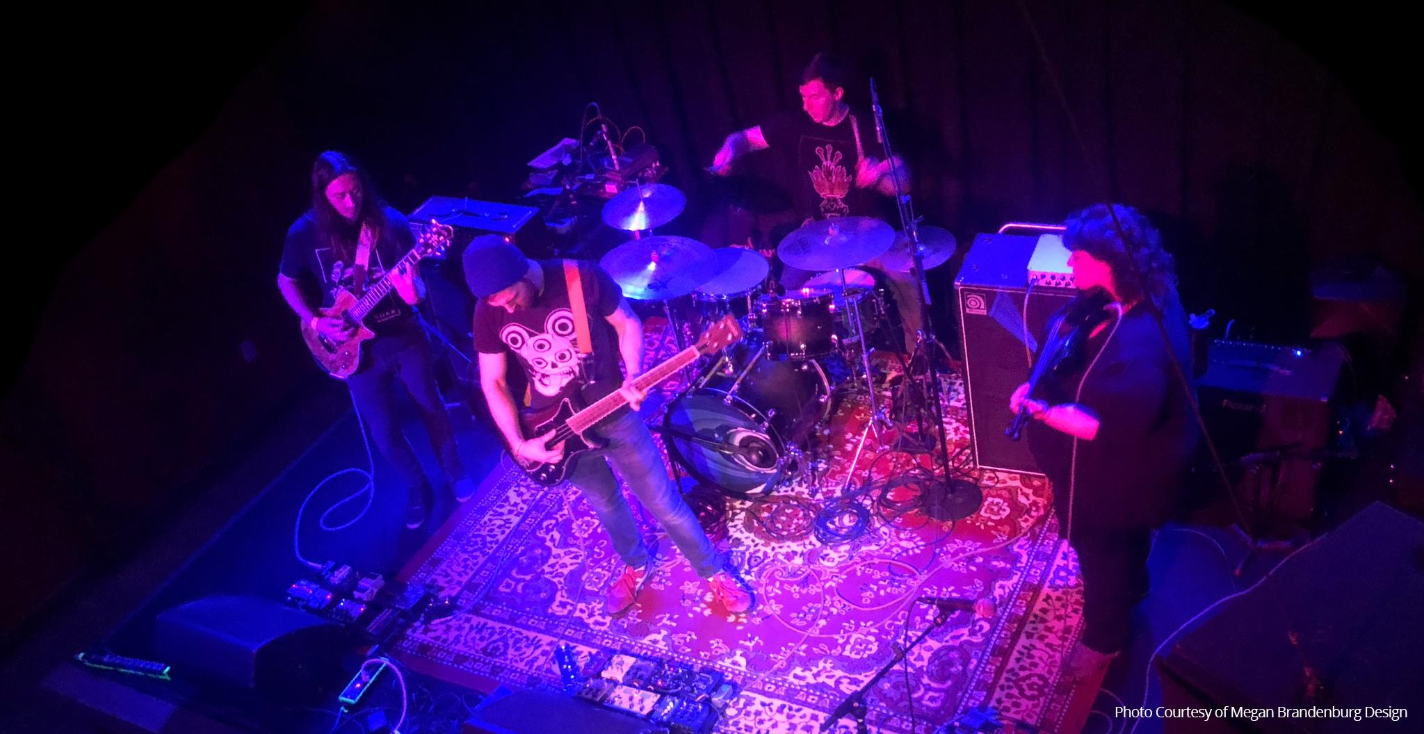 Gazelle(s) Band Live Performance